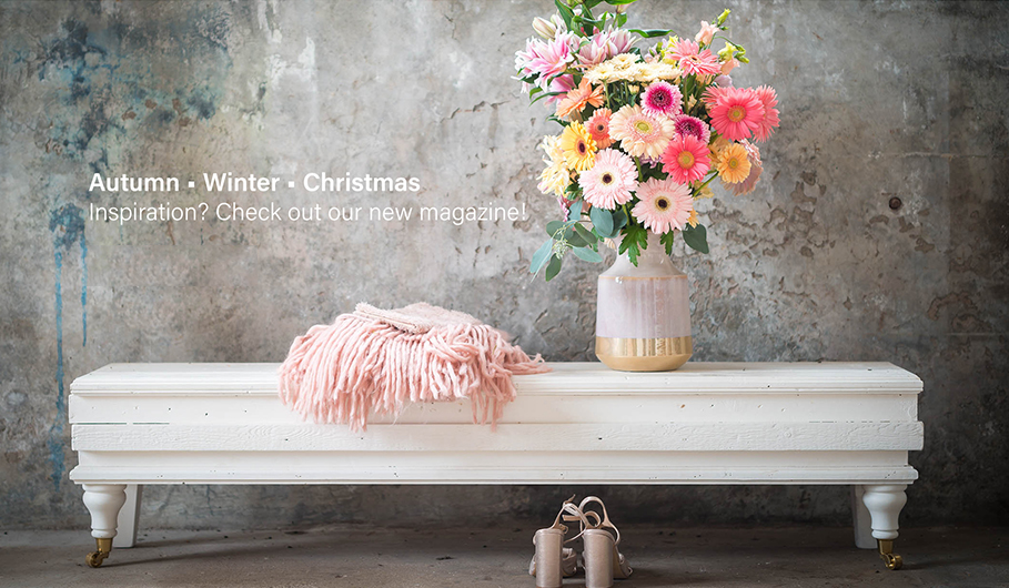 The latest gerbera trends for autumn, winter and Christmas
