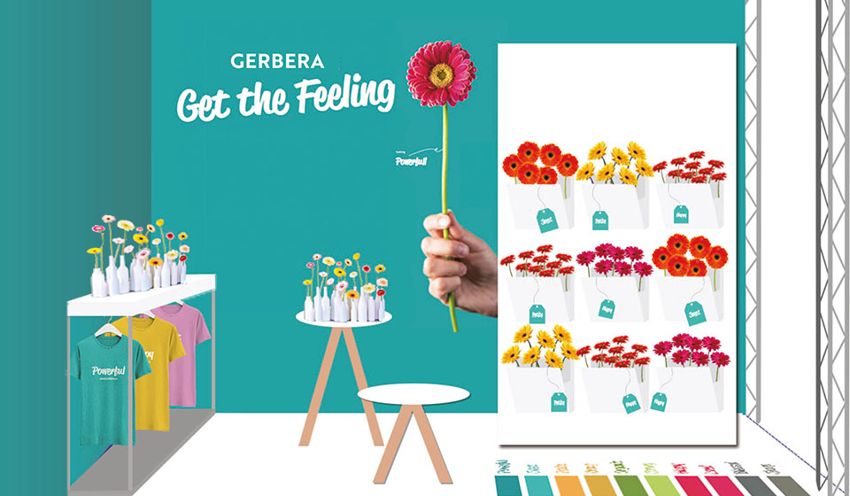 Coloured by Gerbera stand Trade Fair Aalsmeer