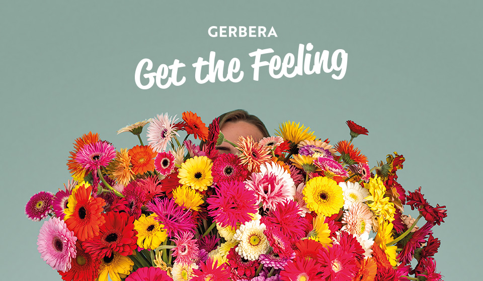 Gerbera campaign Get the Feeling