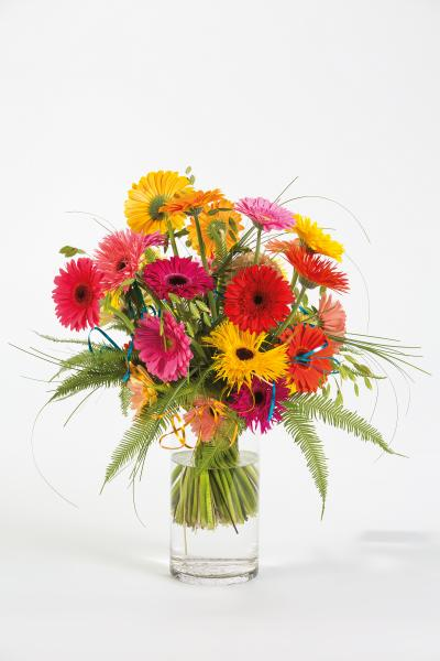 coloured-by-gerbera-summertime-gerberatime-8