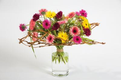 coloured-by-gerbera-summertime-gerberatime-21