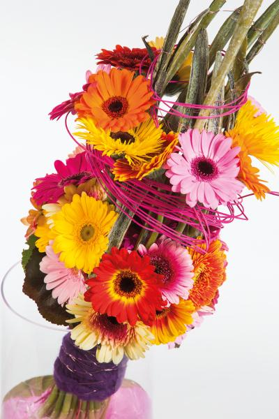 coloured-by-gerbera-summertime-gerberatime-36