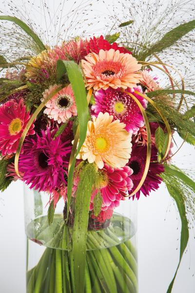 coloured-by-gerbera-summertime-gerberatime-39
