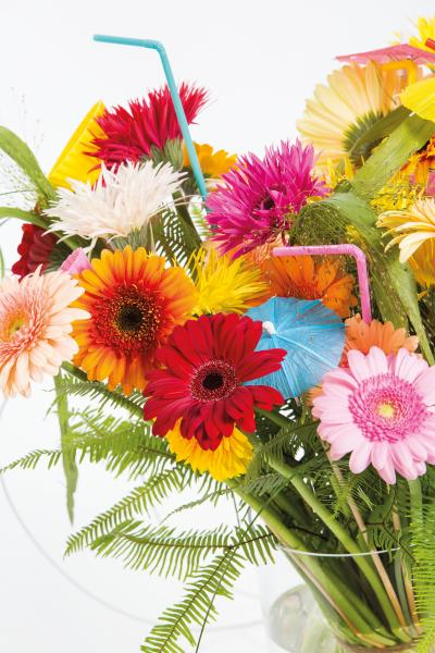 coloured-by-gerbera-summertime-gerberatime-45