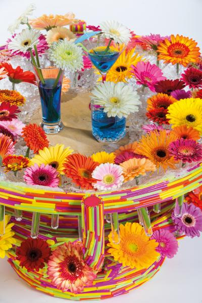 coloured-by-gerbera-summertime-gerberatime-61