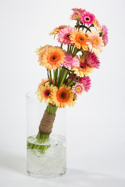 coloured-by-gerbera-summertime-gerberatime-66