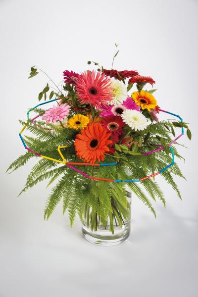 coloured-by-gerbera-summertime-gerberatime-99