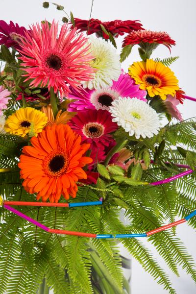 coloured-by-gerbera-summertime-gerberatime-102