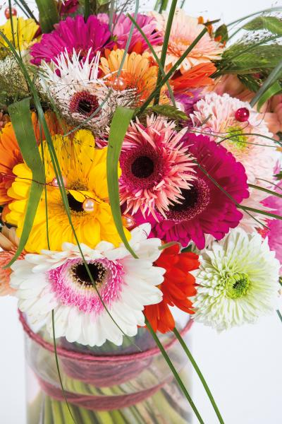 coloured-by-gerbera-summertime-gerberatime-127
