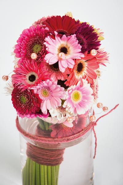 coloured-by-gerbera-summertime-gerberatime-129