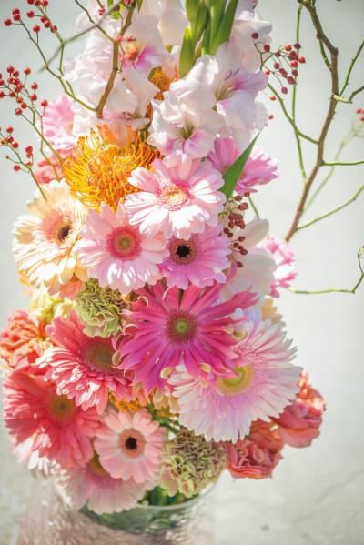 coloured-by-gerbera-magazine-on-tour-switzerland-32