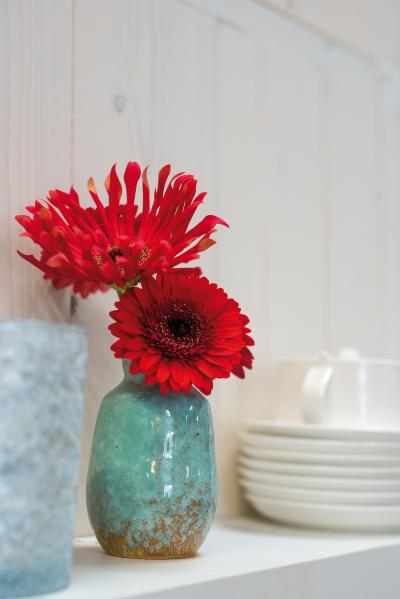 IAP 2dezign gerbera winter 2016-106