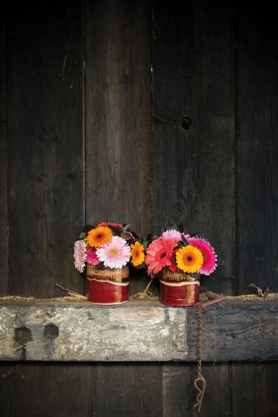 IAP 2dezign gerbera winter 2016-254