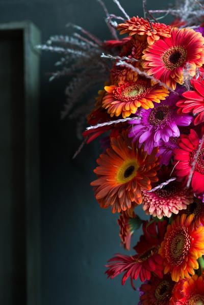 colouredbygerbera-2018-autumn-54