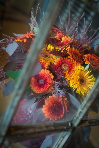 colouredbygerbera-2018-autumn-71
