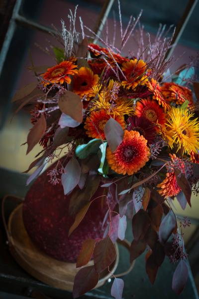 colouredbygerbera-2018-autumn-73