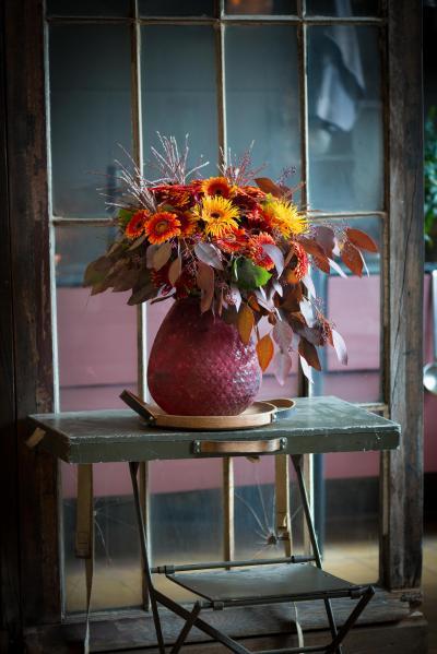 colouredbygerbera-2018-autumn-76