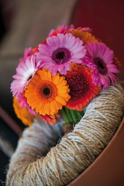 IAP 2dezign gerbera winter 2016-289