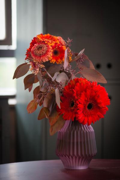 colouredbygerbera-2018-autumn-29