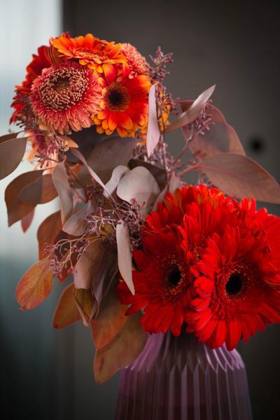 colouredbygerbera-2018-autumn-30