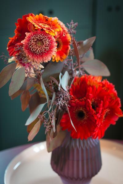 colouredbygerbera-2018-autumn-28