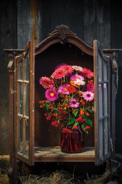 IAP 2dezign gerbera winter 2016-292